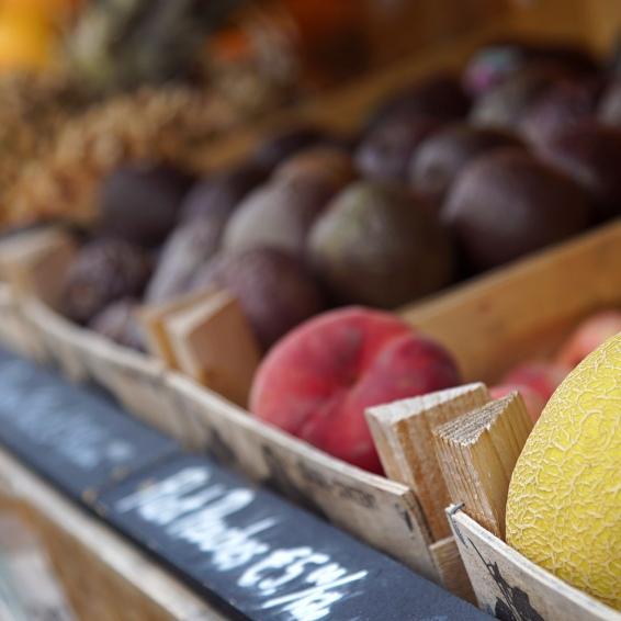 Melonsandfruit